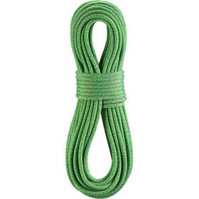 Edelrid Boa Gym Corda 9,8mm x 40m, verde